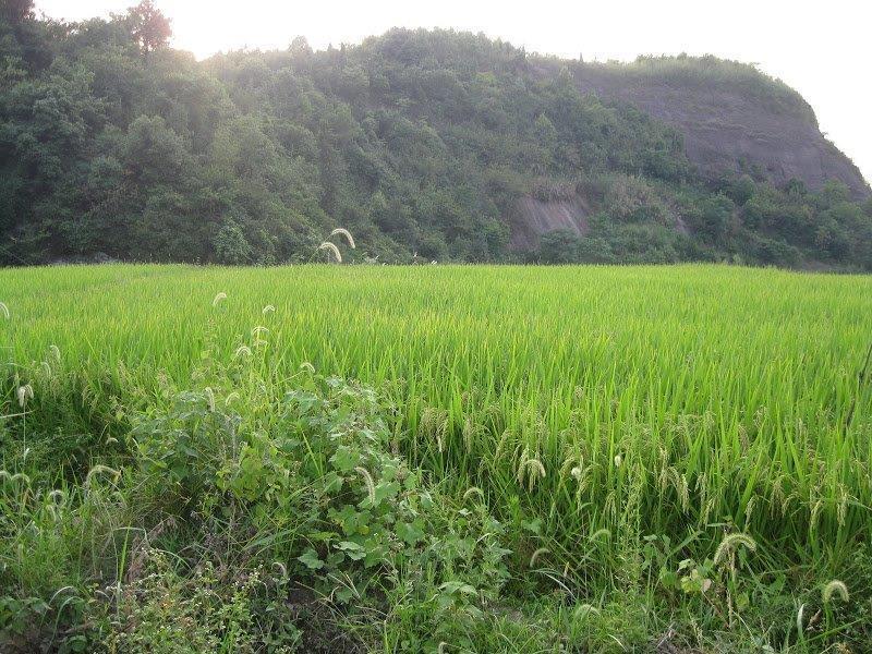 Hunan-travelling-2011 (26)