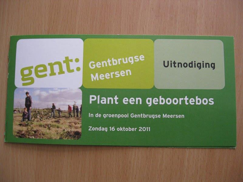 ghent-plant-tree-son (1)