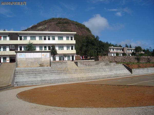 安仁县新洲学校
