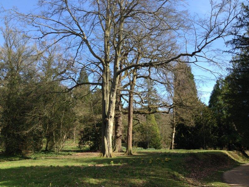 Chatsworth-house (36)