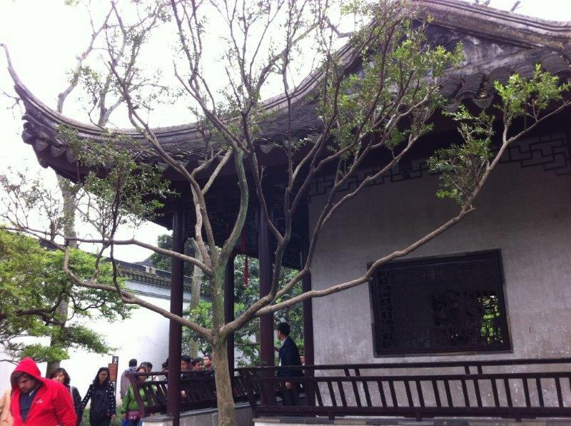 travelling-china-suzhou-wuxi (8)