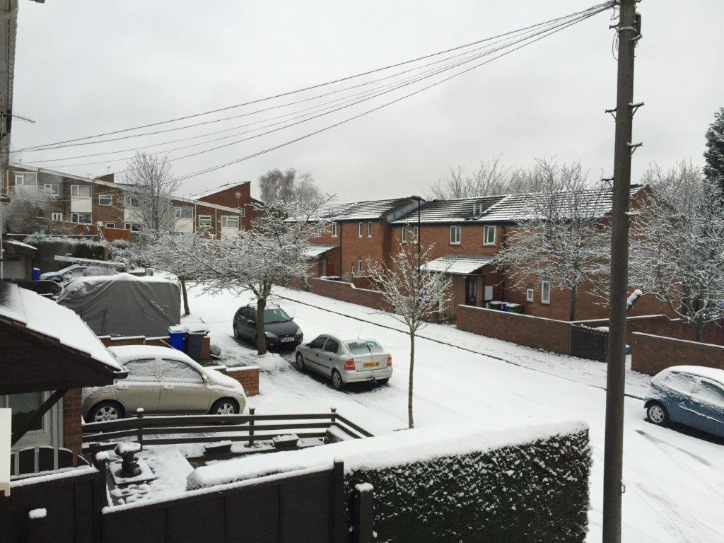 snow-2016 (2)