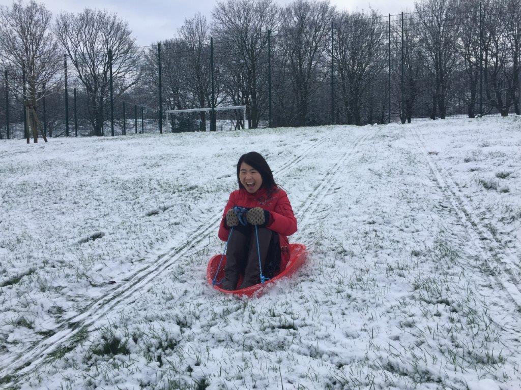snow-2016 (3)