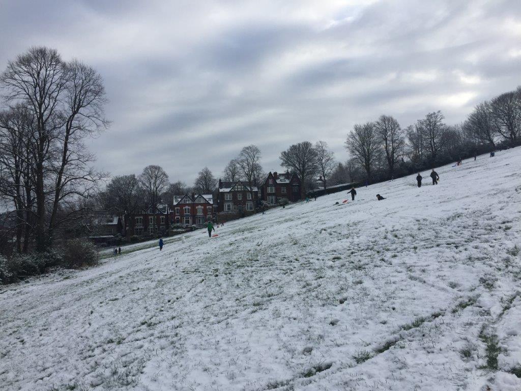 snow-2016 (5)