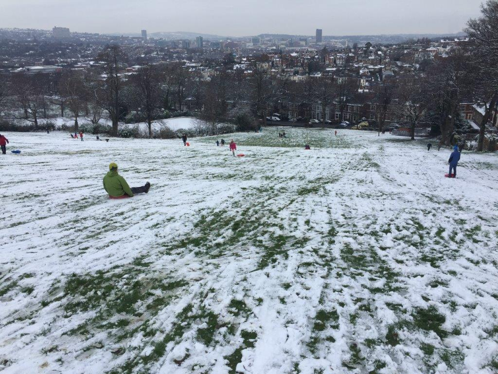 snow-2016 (6)