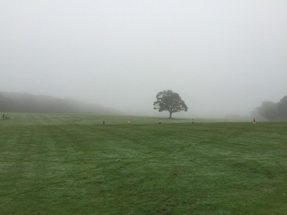 graves-park-morning