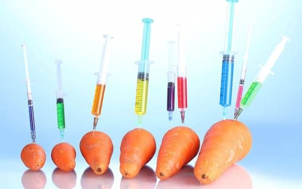 genetically-modified-food.jpg